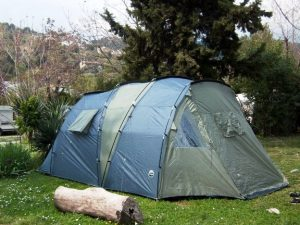 Beli tenda